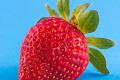Cursos on-line sobre alergia alimentar, inscrições abertas!