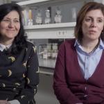 Depoimento Vencedores Prémio Excelência em e-learning: Paula Andrade e Patrícia Valentão